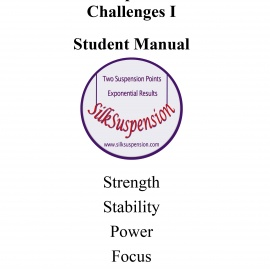 Suspension Challenges I